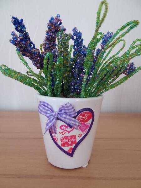 Lavendel in Töpfchen